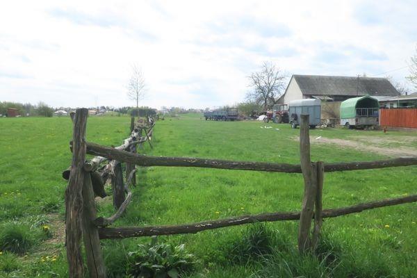 Działka budowlana na sprzedaż Cerekiew, Cerekiew  7832m2 Foto 6