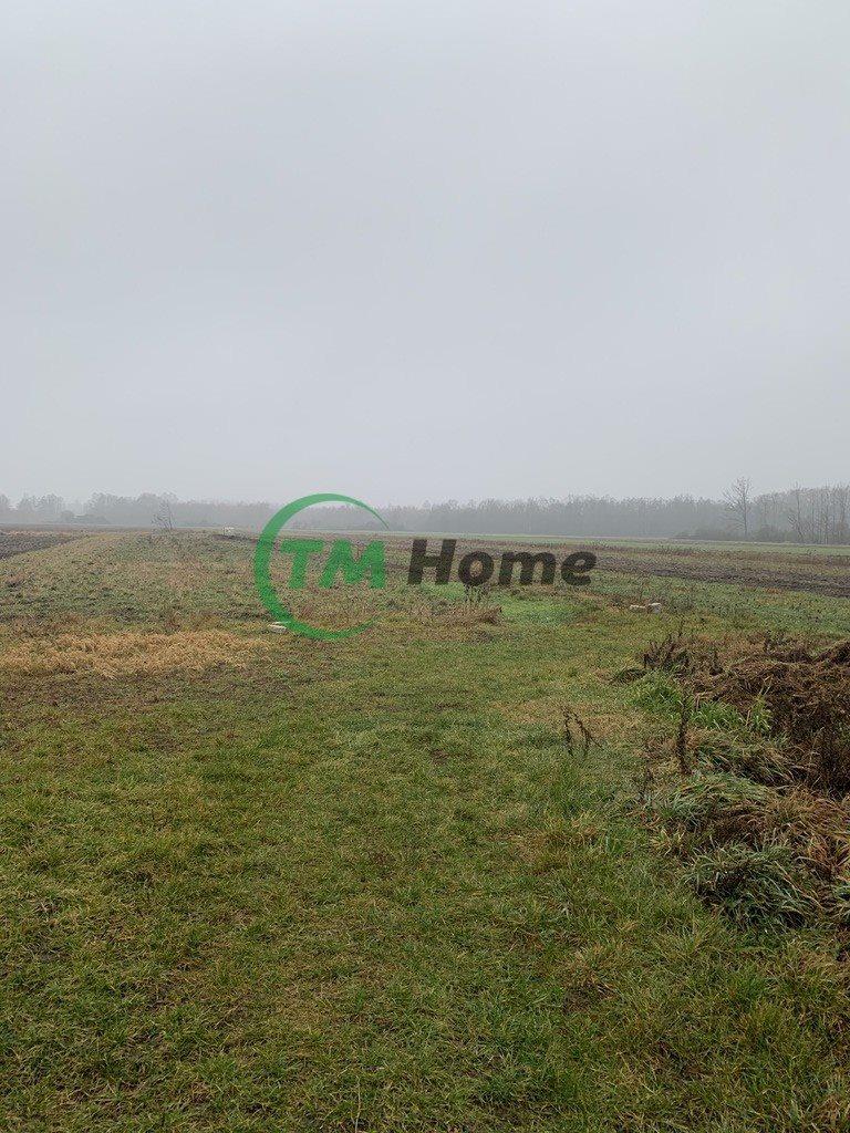 Działka rolna na sprzedaż Łosewo  12000m2 Foto 2