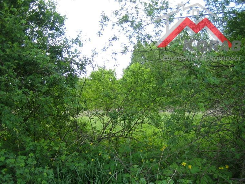 Działka budowlana na sprzedaż Kępa Kiełpińska, Kępa Kiełpińska  8800m2 Foto 2