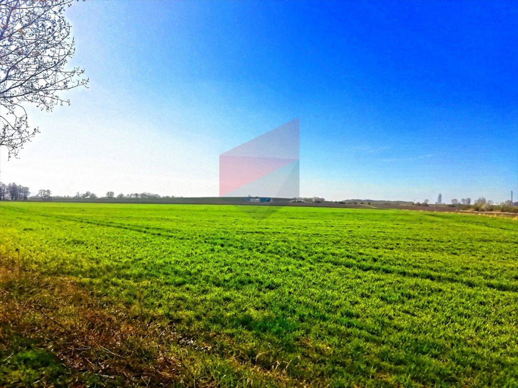 Działka przemysłowo-handlowa na sprzedaż Domasław, Południowa  51151m2 Foto 3