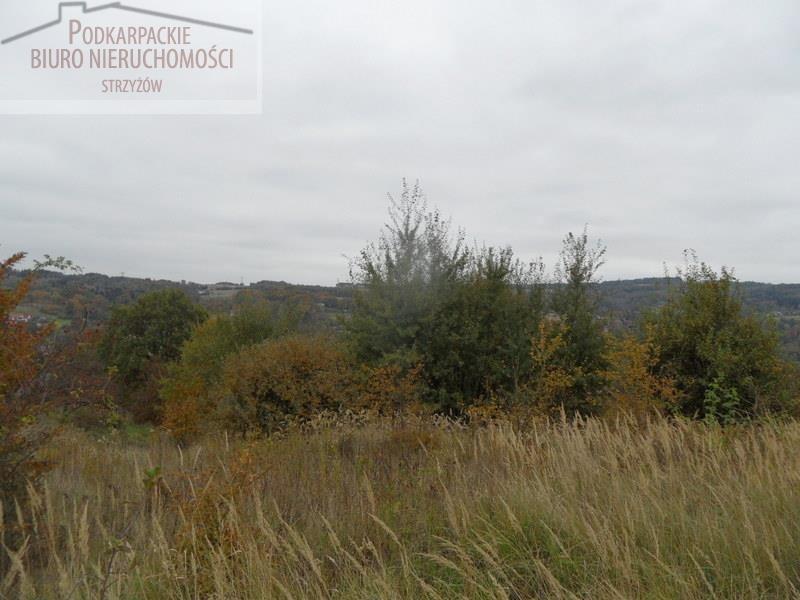 Działka budowlana na sprzedaż Glinik Zaborowski  5580m2 Foto 3