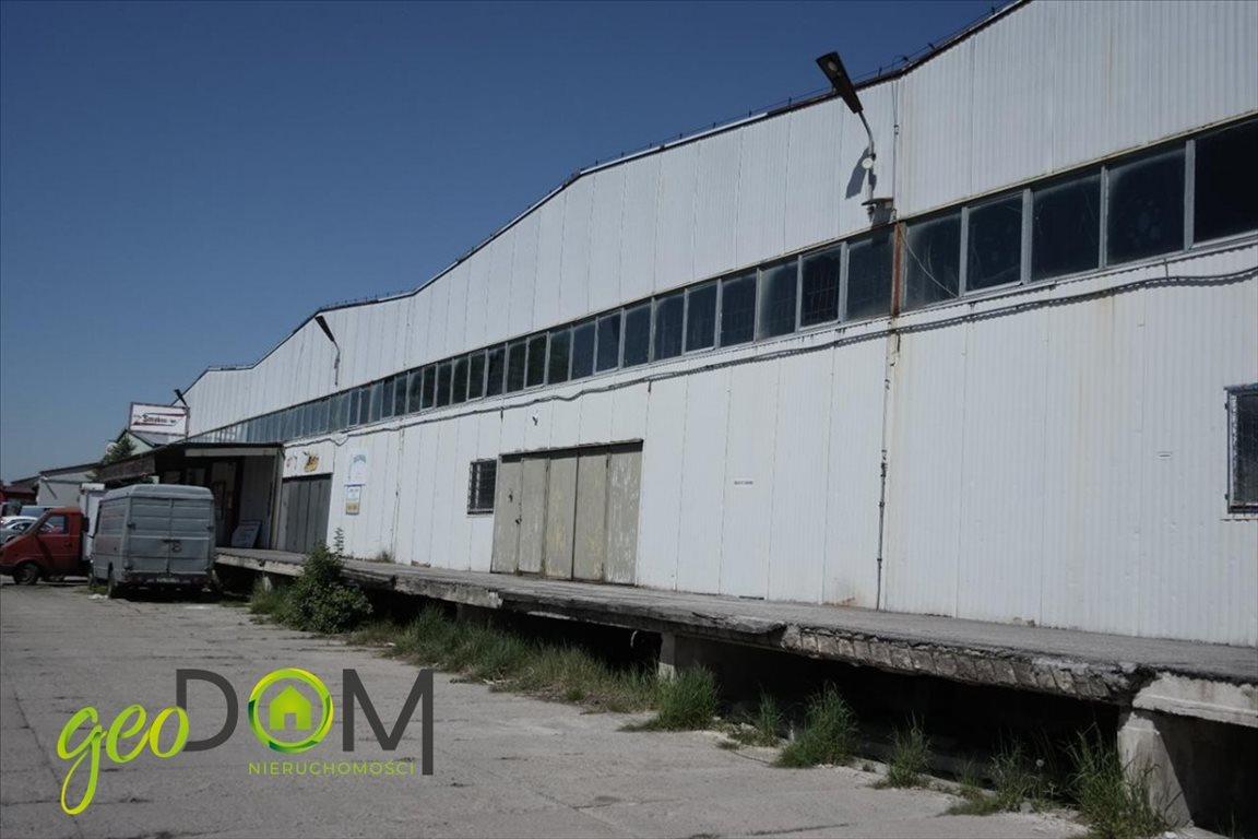 Lokal użytkowy na wynajem Chełm, Okszowska  2500m2 Foto 3