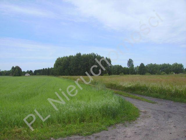 Działka rolna na sprzedaż Holendry Baranowskie  28400m2 Foto 2