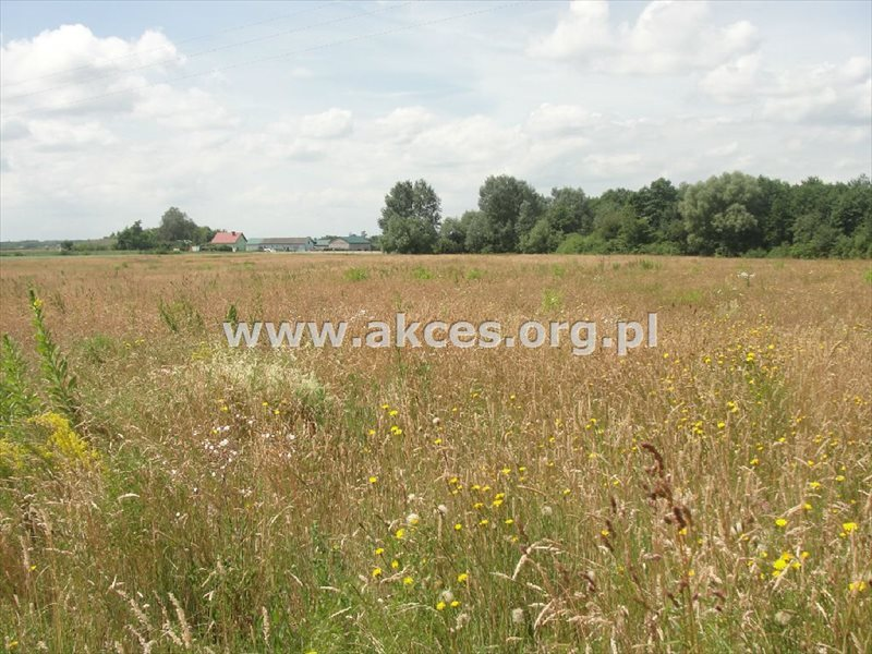 Działka rolna na sprzedaż Pawłówka  71900m2 Foto 1
