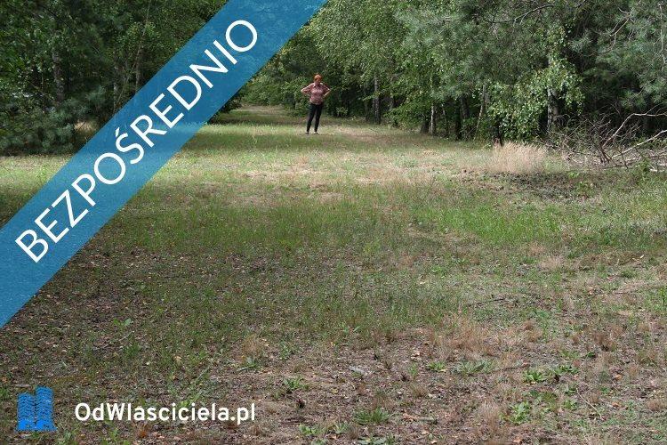 Działka leśna z prawem budowy na sprzedaż Miszewo Wielkie  3600m2 Foto 6