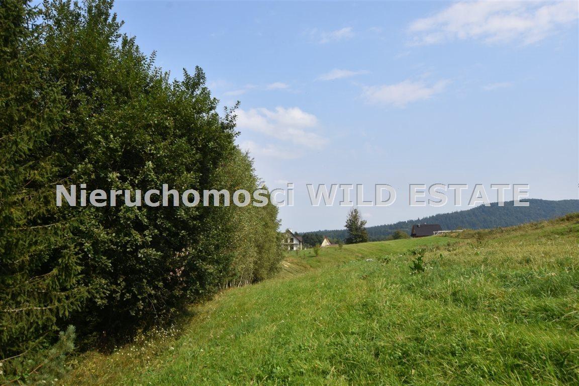 Działka rolna na sprzedaż Lesko, Weremień  3177m2 Foto 3