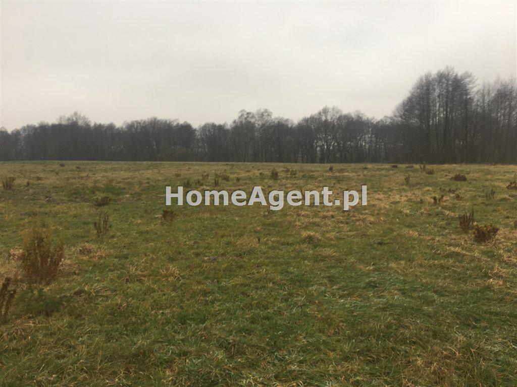 Działka rolna na sprzedaż Mikołów, Paniowy, ok. Rybołówka  6519m2 Foto 6