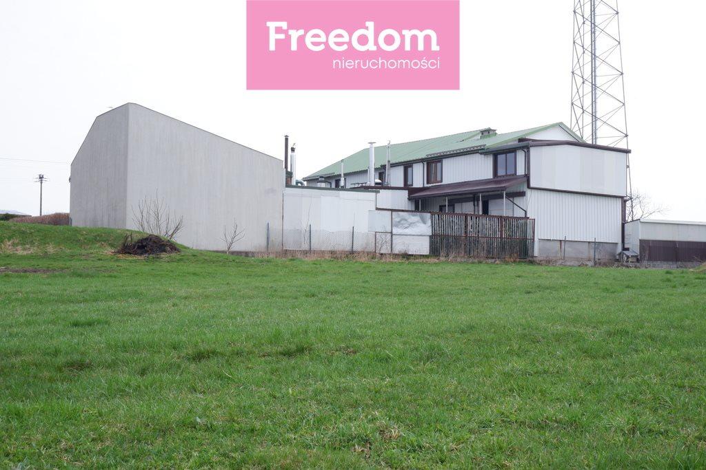 Lokal użytkowy na sprzedaż Mały Płock  900m2 Foto 4