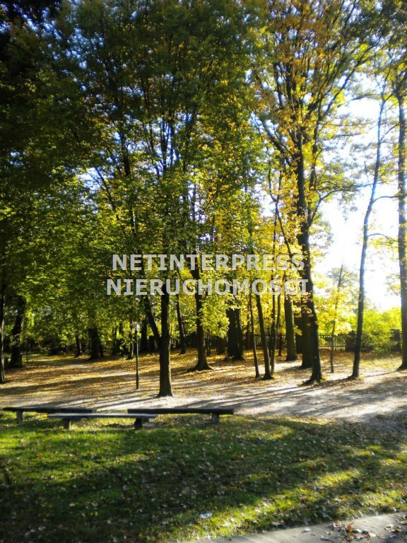 Lokal użytkowy na sprzedaż Dąbrówka Wielkopolska  4500m2 Foto 5
