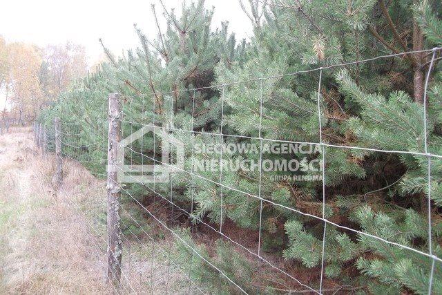 Działka leśna na sprzedaż Drozdowo  93200m2 Foto 10