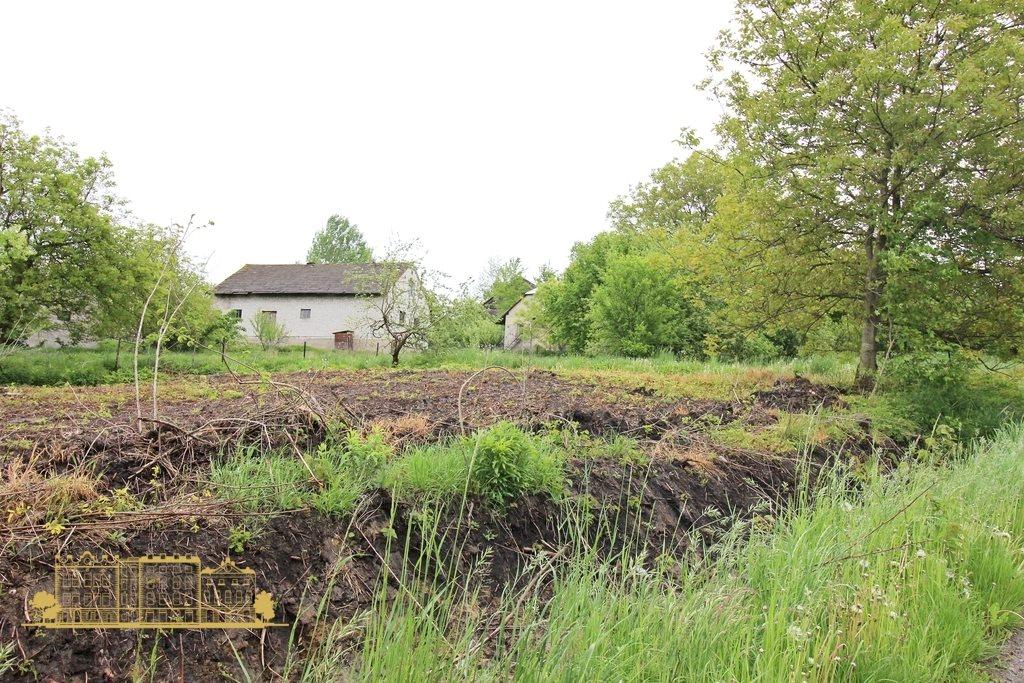 Działka rolna na sprzedaż Tempoczów-Kolonia  23000m2 Foto 6