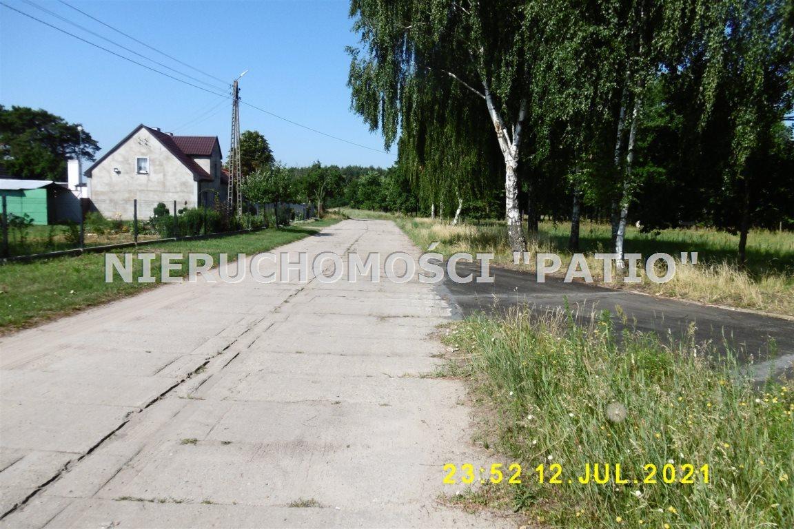 Działka leśna na sprzedaż Kórnik, Radzewo, Dworzyska  4700m2 Foto 8
