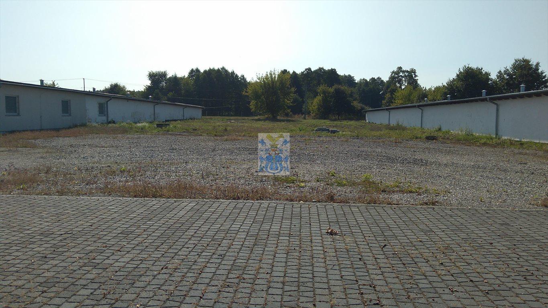 Lokal użytkowy na wynajem Niepołomice  1088m2 Foto 4