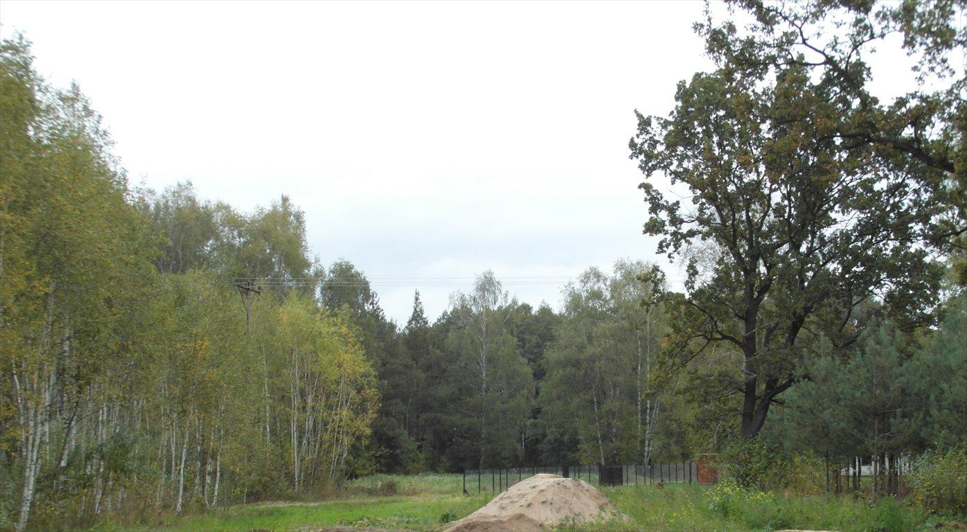 Działka budowlana na sprzedaż Sobienki  3000m2 Foto 2