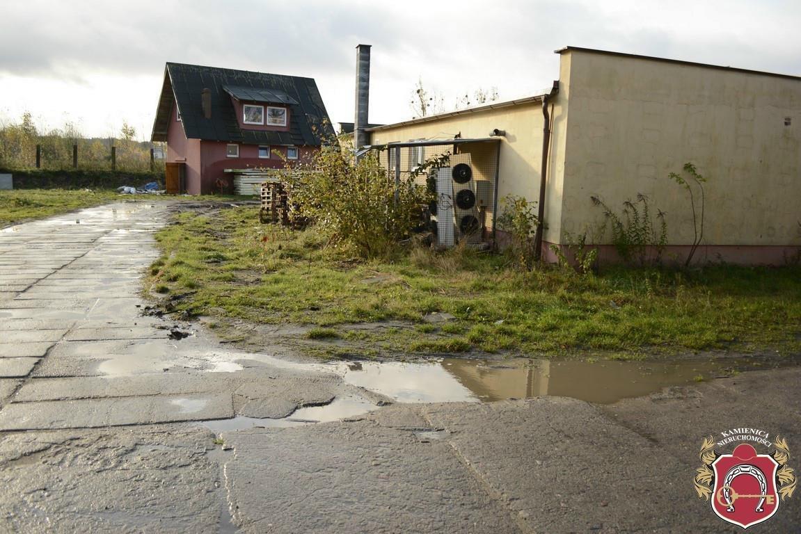 Działka rolna na sprzedaż Rekowo Górne  6429m2 Foto 2