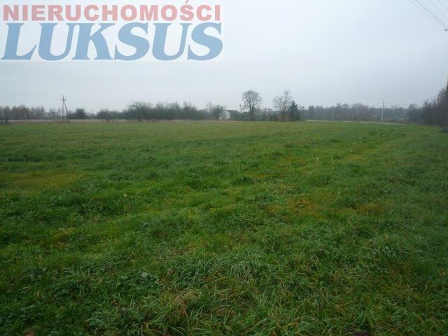 Działka rolna na sprzedaż Prażmów, Prażmów  10000m2 Foto 2