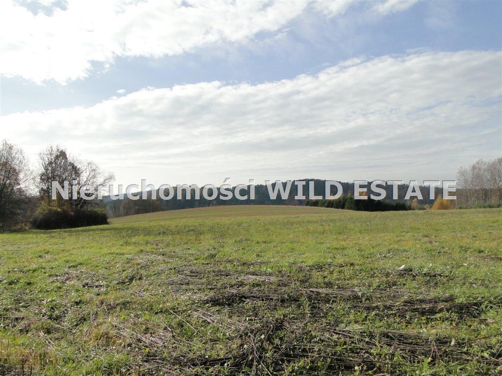 Działka rolna na sprzedaż Solina, Berezka  10398m2 Foto 7