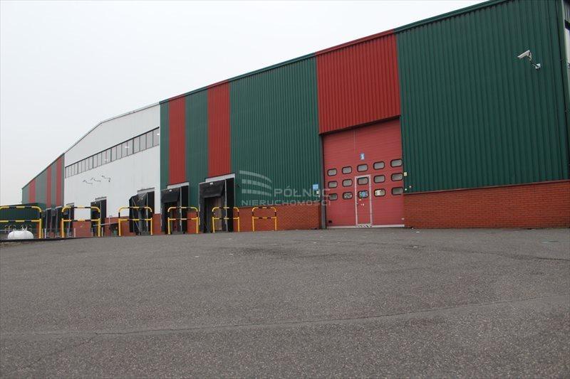 Lokal użytkowy na wynajem Rzgów, Katowicka  2500m2 Foto 3