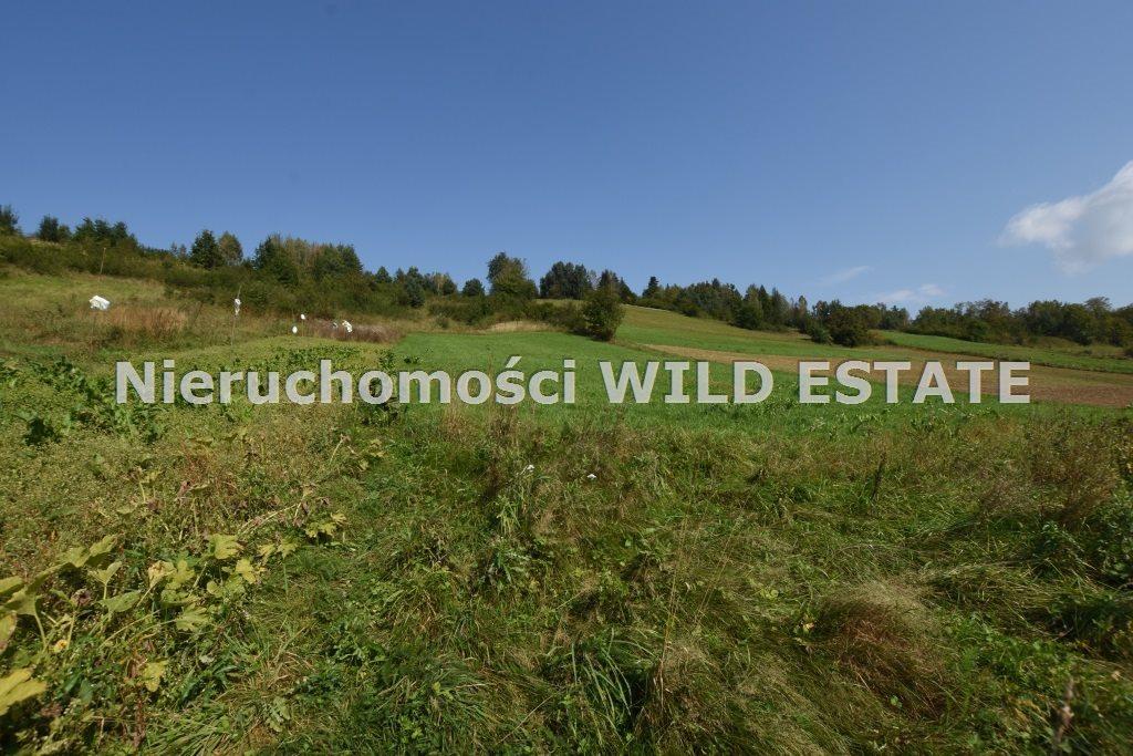 Działka rolna na sprzedaż Lesko, Bezmiechowa Dolna  21797m2 Foto 2