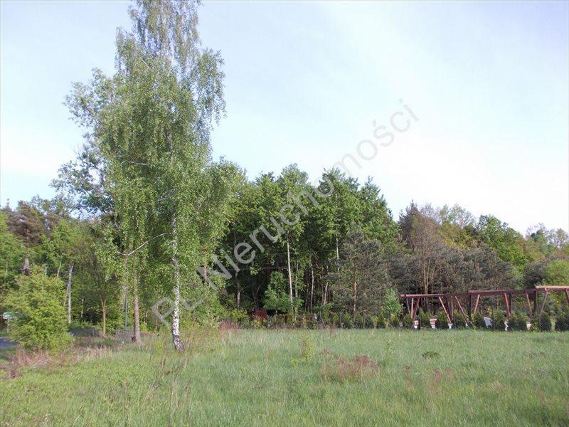 Działka budowlana na sprzedaż Budy Zaklasztorne  1316m2 Foto 3