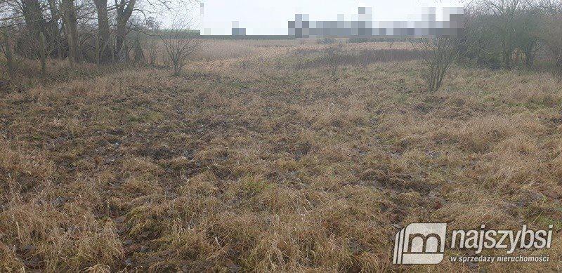 Działka inna na sprzedaż Kołbaskowo, Centrum  2930m2 Foto 2