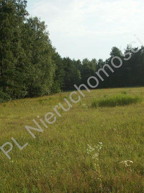 Działka rolna na sprzedaż Stare Budy  1500m2 Foto 2