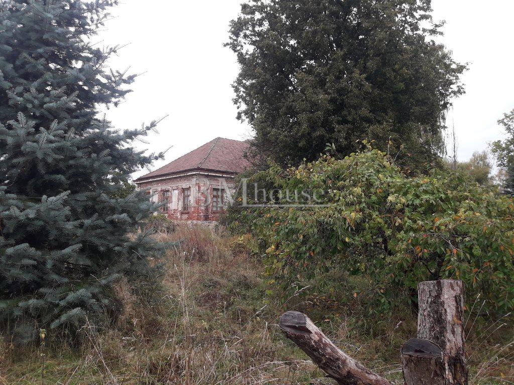 Dom na sprzedaż Bosowice  1500m2 Foto 10