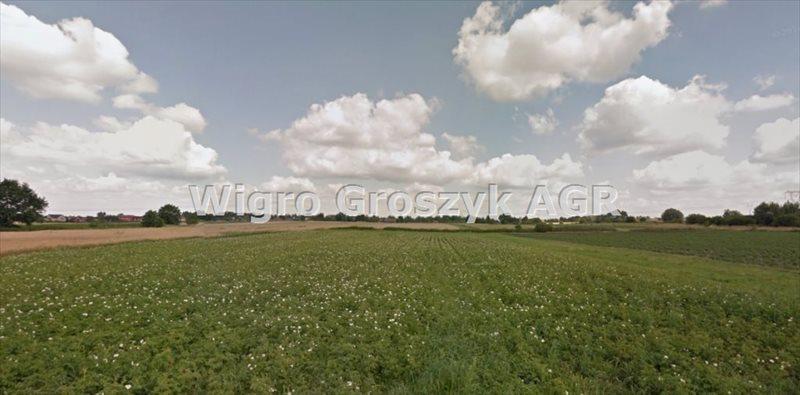 Działka rolna na sprzedaż Kampinos A  27900m2 Foto 1