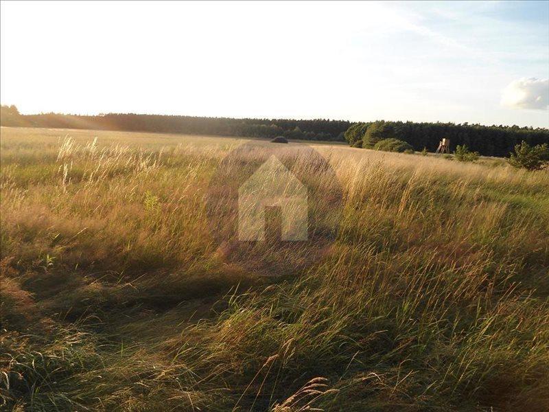 Działka rolna na sprzedaż Jaroszówka  14800m2 Foto 2