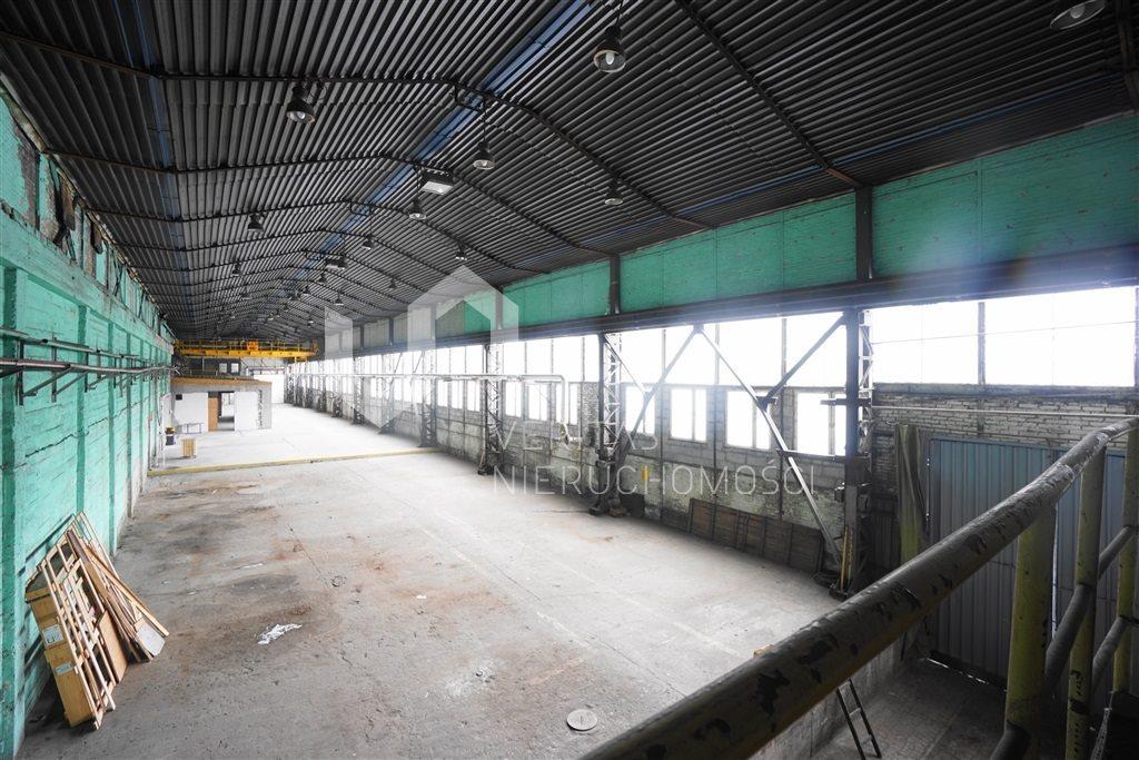 Lokal użytkowy na wynajem Sosnowiec  1240m2 Foto 7