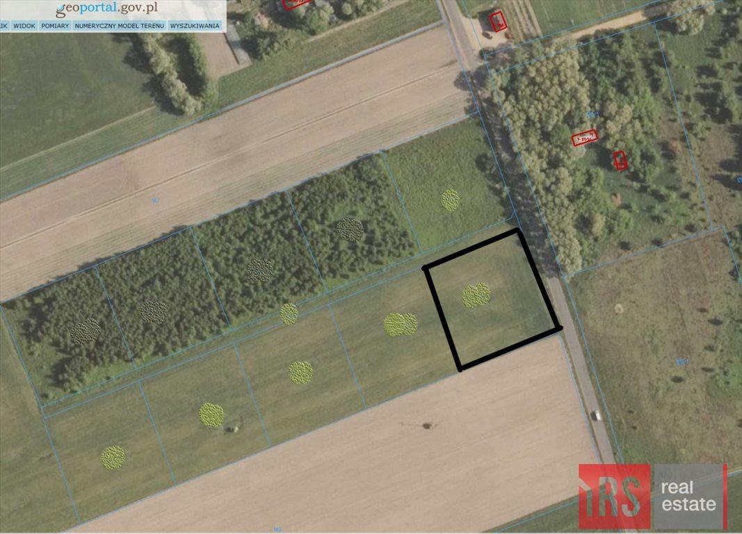 Działka rolna na sprzedaż Nowa Wrona  3000m2 Foto 4