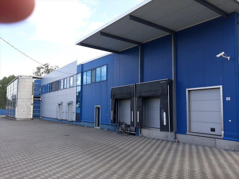 Lokal użytkowy na wynajem Hala - MAGAZYN - produkcja. 3648 m2 - WROCLAW  3648m2 Foto 1