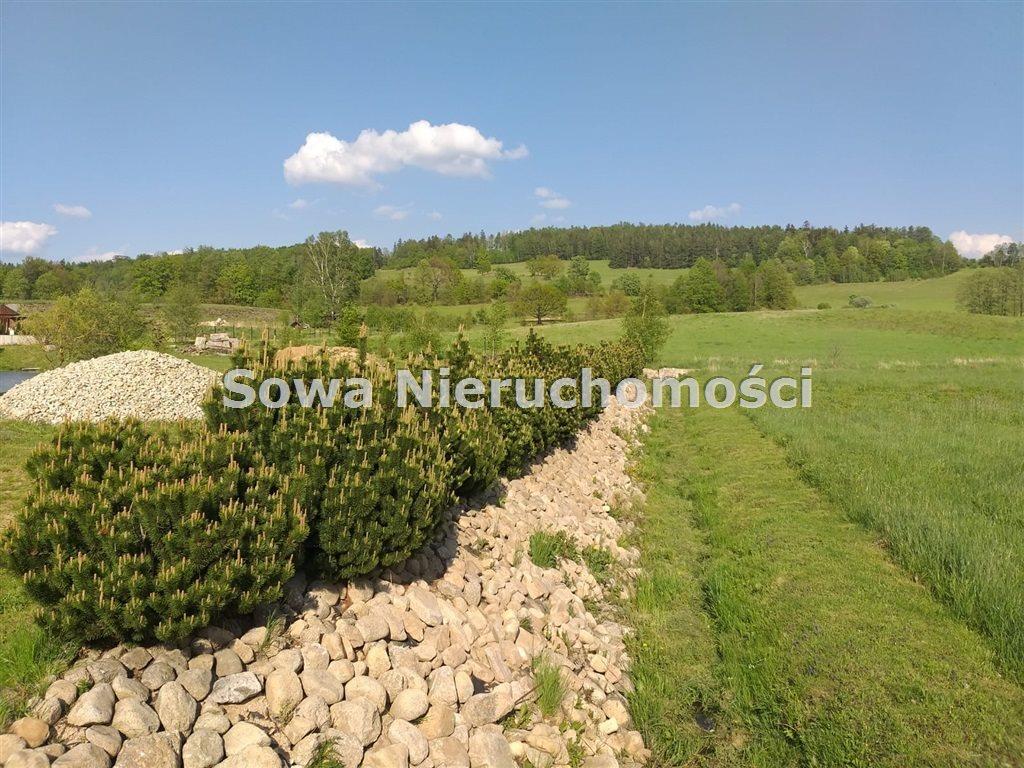 Działka inna na sprzedaż Sosnówka  6000m2 Foto 4