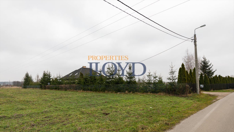 Działka inwestycyjna na sprzedaż Antoninów, Dobrych Sąsiadów  4300m2 Foto 8