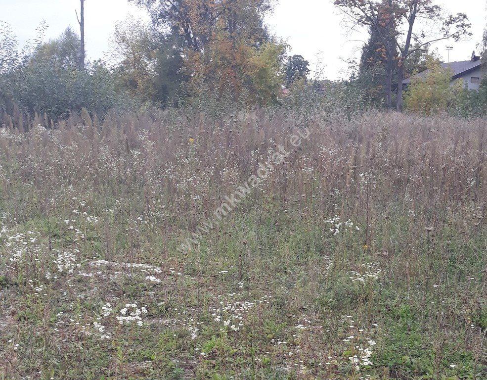 Działka siedliskowa na sprzedaż Piaseczno  6311m2 Foto 7