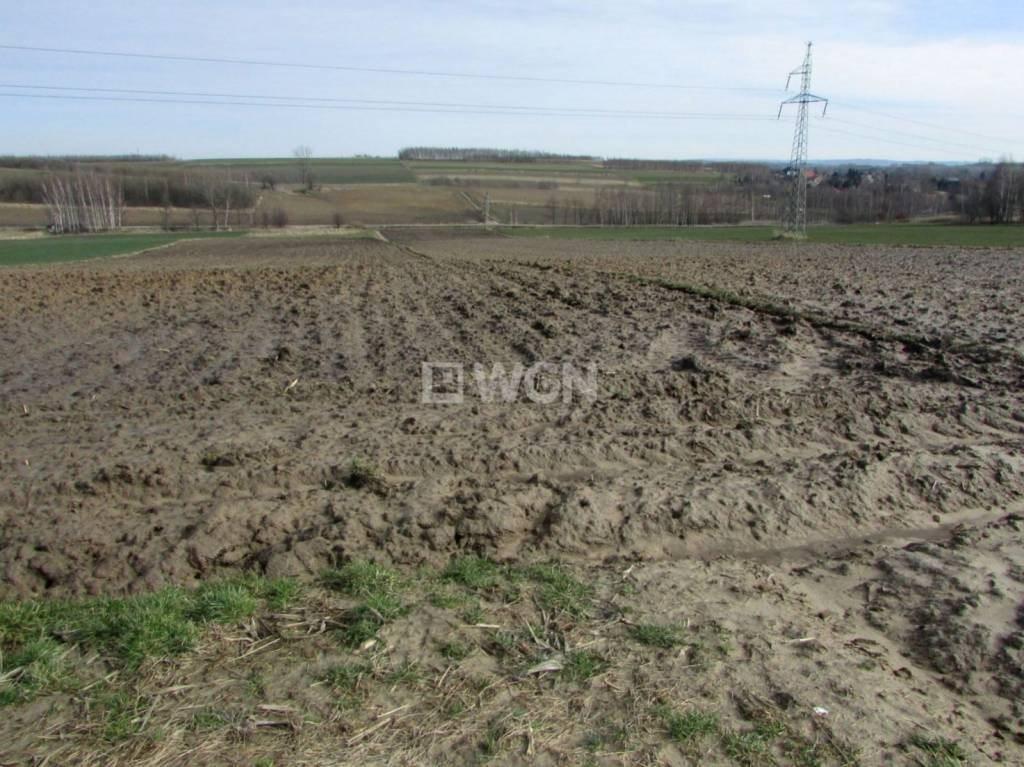 Działka rolna na sprzedaż Wola Zgłobieńska, Wola Zgłobieńska, Wola Zgłobieńska  4600m2 Foto 5