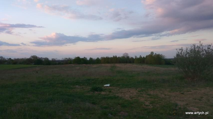 Działka rolna na sprzedaż Rudniki  33200m2 Foto 3