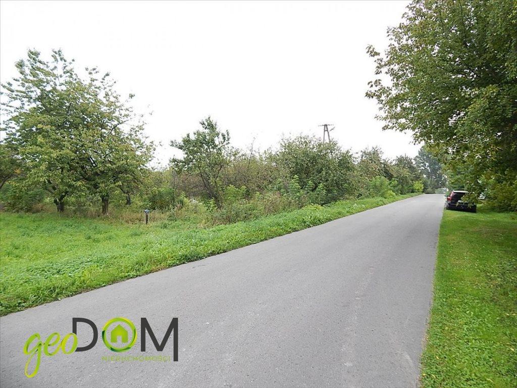 Działka rolna na sprzedaż Horodyszcze-Kolonia  11293m2 Foto 3