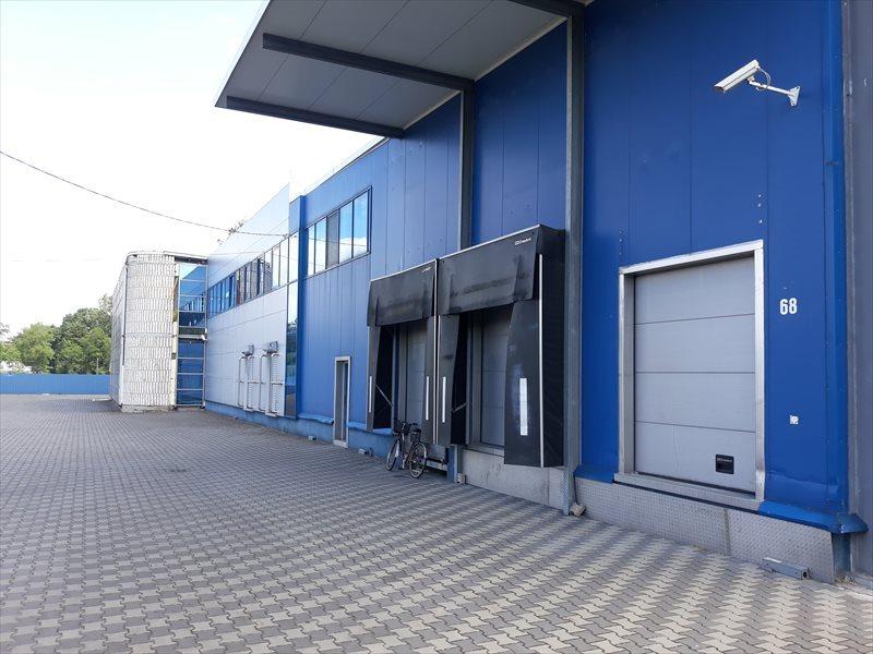 Lokal użytkowy na wynajem Hala - MAGAZYN - produkcja. 3648 m2 - WROCLAW  3648m2 Foto 3