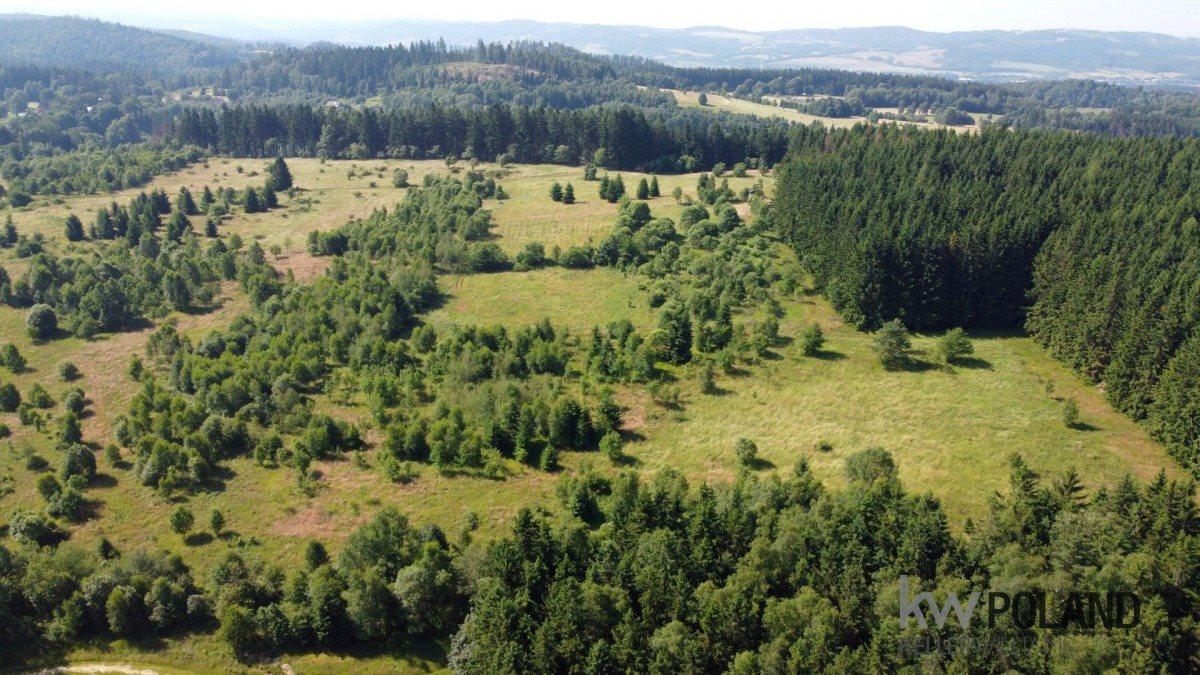 Działka rolna na sprzedaż Kudowa-Zdrój, Pstrążna  14309m2 Foto 5