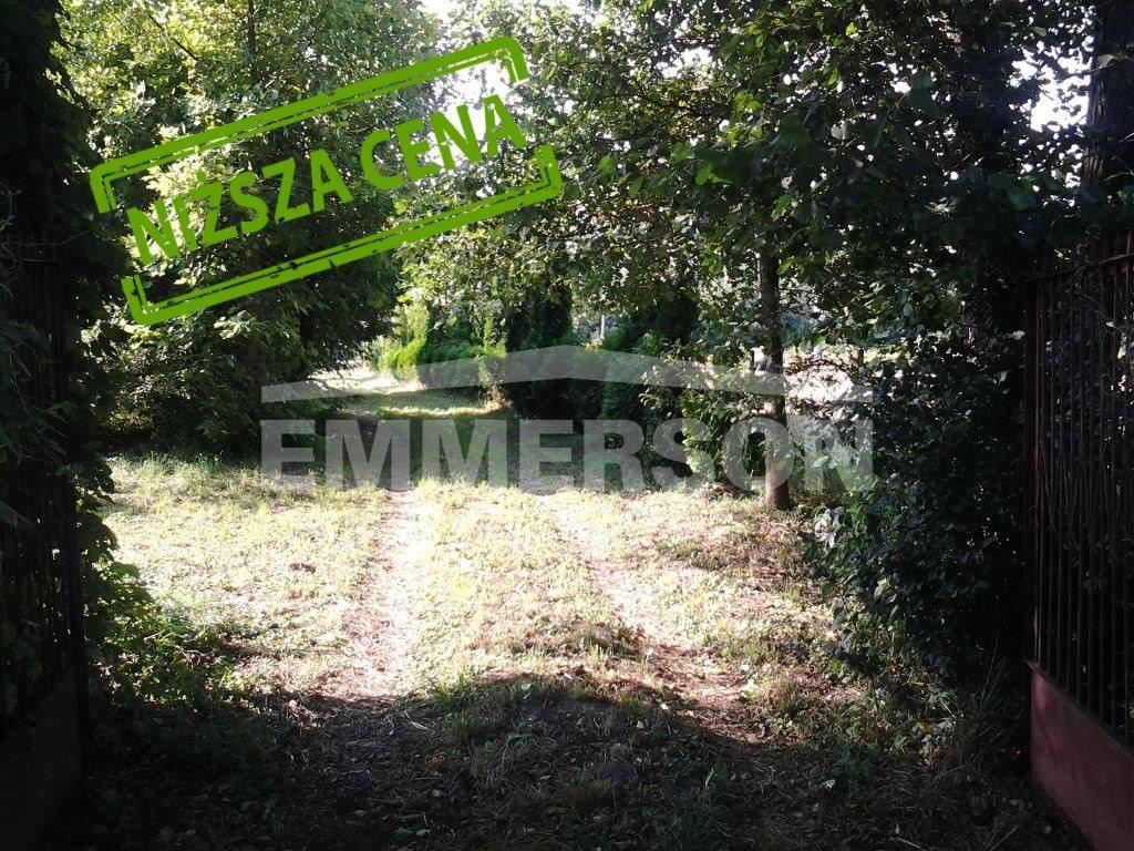 Działka rolna na sprzedaż Czosnów  12000m2 Foto 2