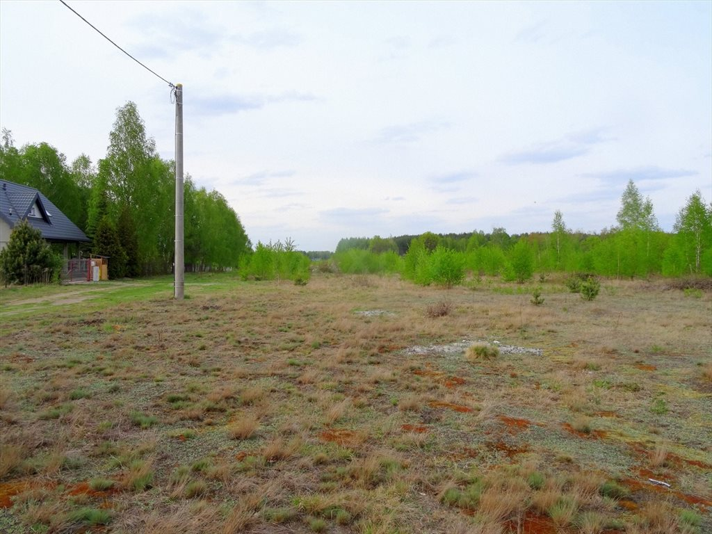 Działka inwestycyjna na sprzedaż Kołaków  23255m2 Foto 2