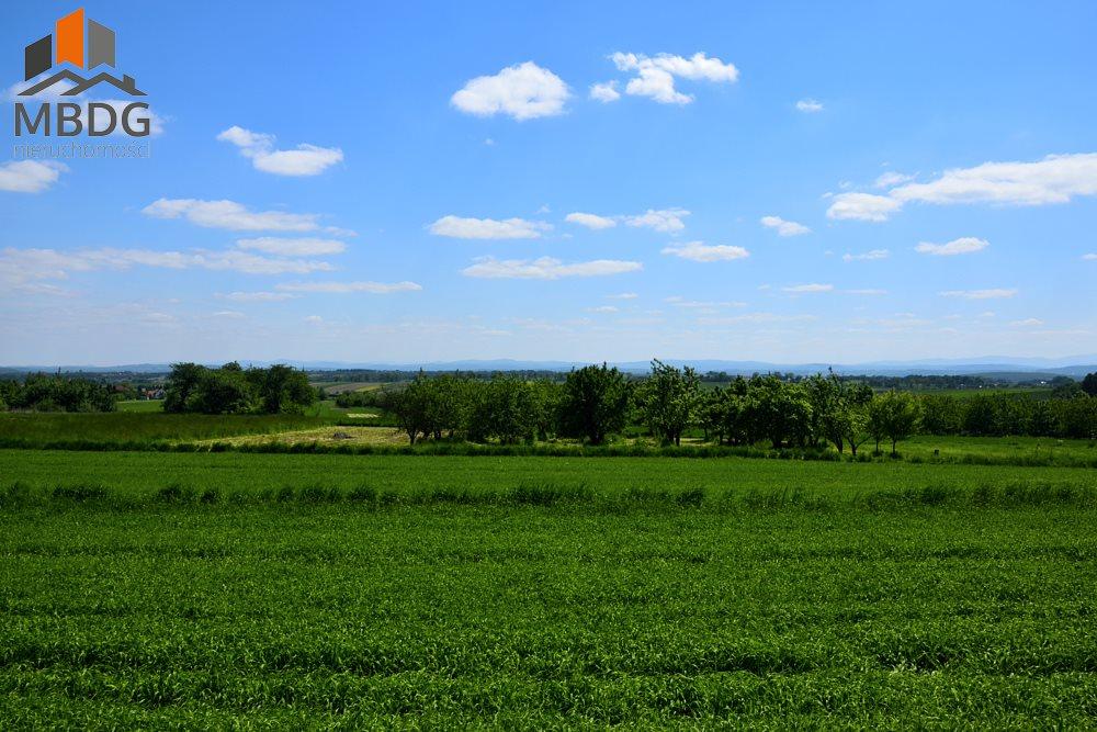 Działka rolna na sprzedaż Czułów  16800m2 Foto 2