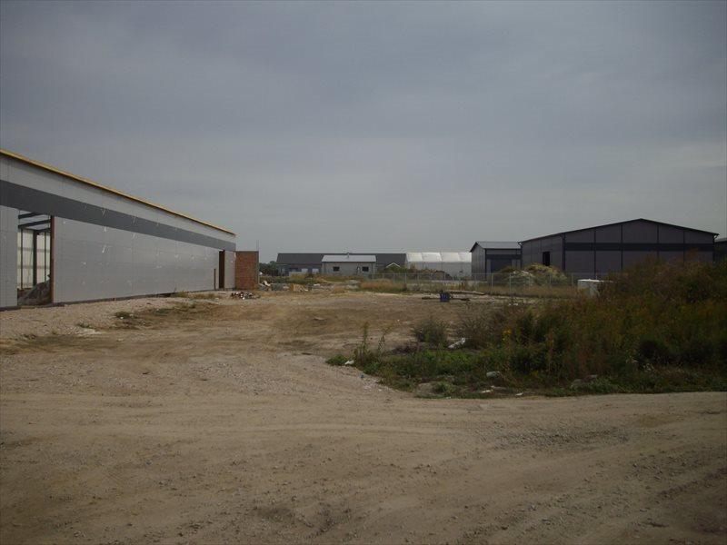 Działka przemysłowo-handlowa na sprzedaż Wrocław, Psie Pole  13000m2 Foto 10