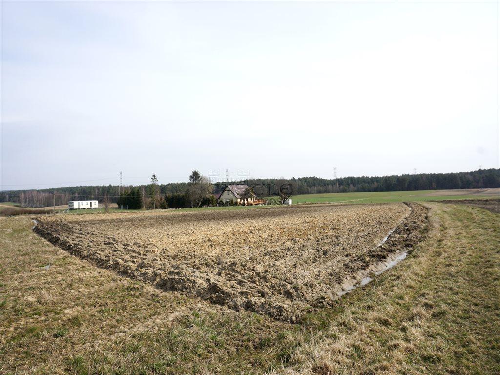 Działka rolna na sprzedaż Rąb  1033m2 Foto 6