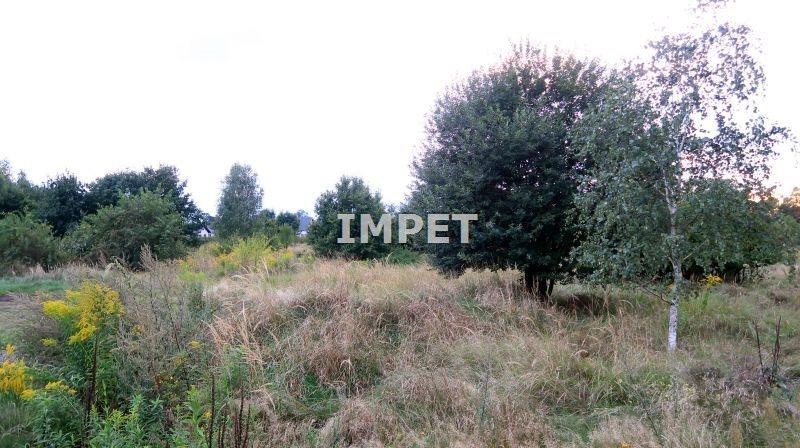 Działka inna na sprzedaż Łagów  15447m2 Foto 2