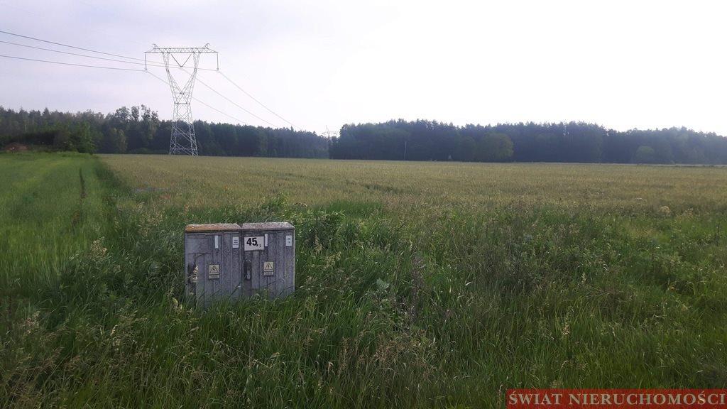 Działka budowlana na sprzedaż Bartków  2700m2 Foto 3