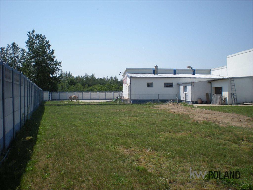 Lokal użytkowy na sprzedaż Łęka Opatowska  1010m2 Foto 6