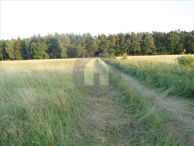 Działka rolna na sprzedaż Jaroszówka  14800m2 Foto 1