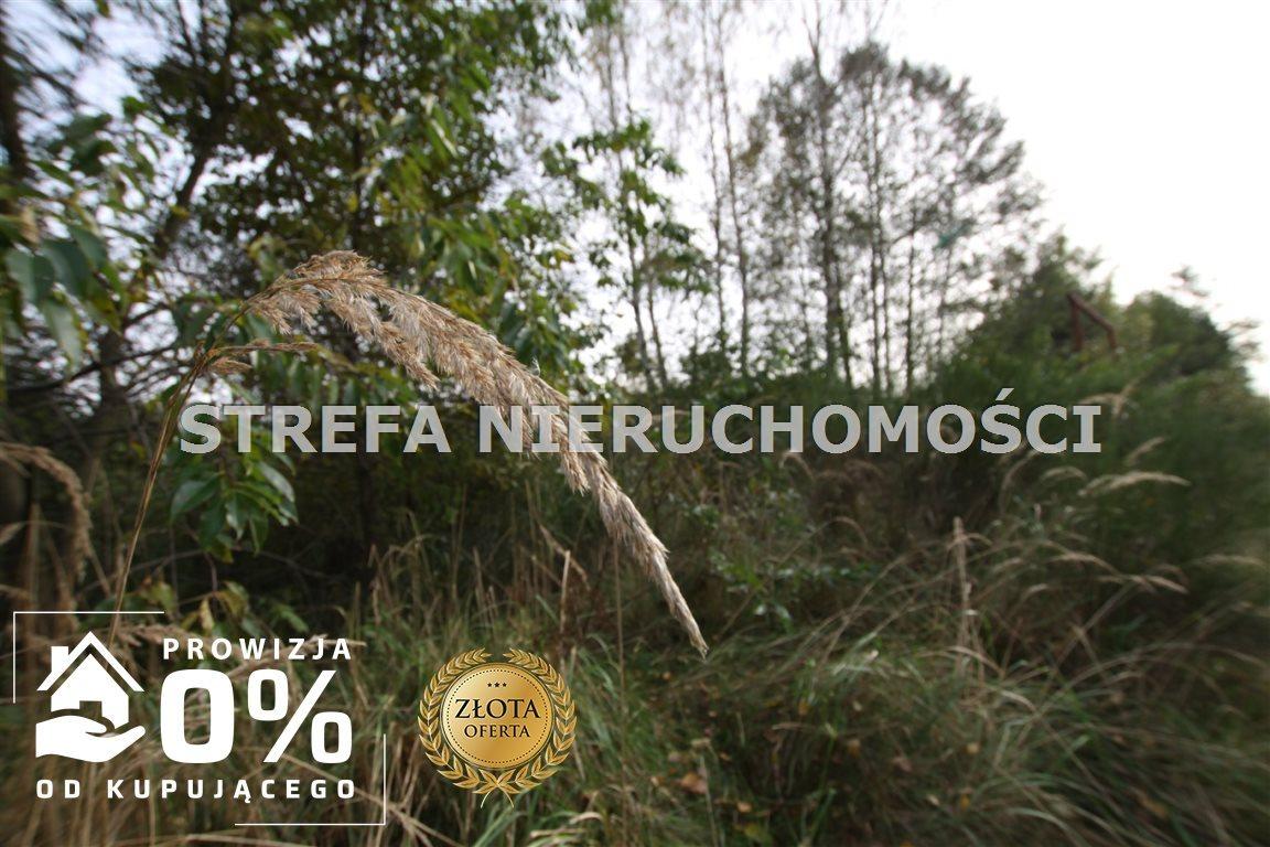 Działka leśna na sprzedaż Małoszyce  57000m2 Foto 1